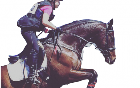 Equestrian sports: Passion meets competition