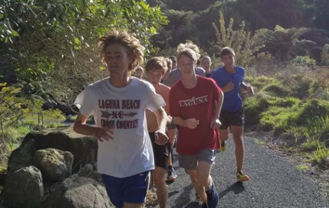 Boys cross country team takes traveling to new level