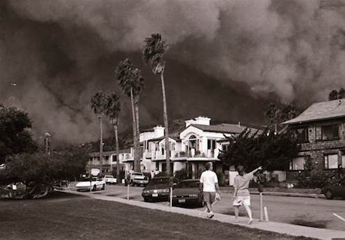 Usually a place of coastal beauty, Heisler Park was transformed during the 1993 fire.